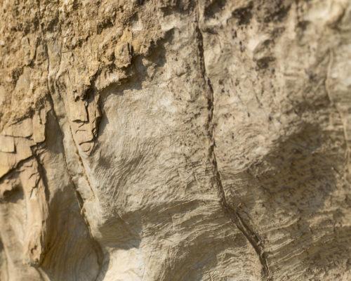 Rocce dal suolo